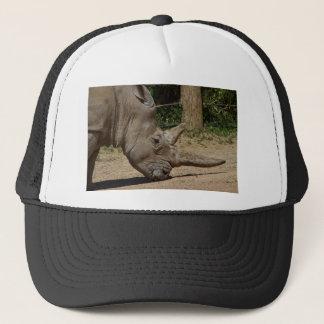 Nashorn - Ceratotherium simum simum Truckerkappe