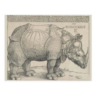 Nashorn, Holzschnitt durch Albrecht Durer Postkarte
