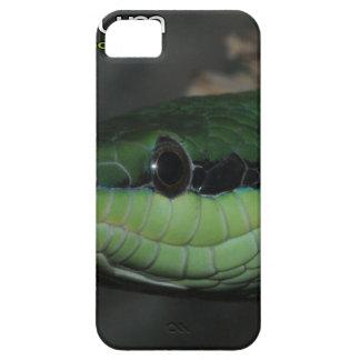 Nashorn ratsnake etui fürs iPhone 5