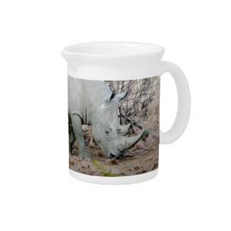 Nashorn von Südafrika Krug