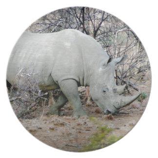 Nashorn von Südafrika Melaminteller