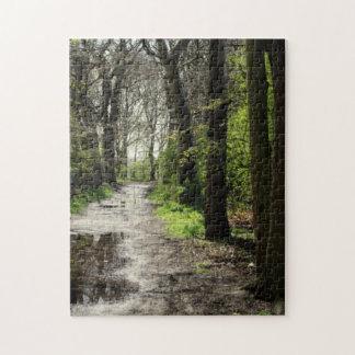 Nasser Regen-Pfützen-Weg im Moos bedeckte Puzzle