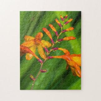 Nasses orange Blumen-Fotopuzzlespiel Puzzle