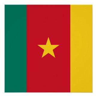 Nationale Weltflagge Kameruns Poster