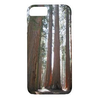 Nationalpark des Mammutbaums iPhone 8/7 Hülle