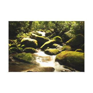 Nationalpark Great Smoky Mountains Leinwanddruck