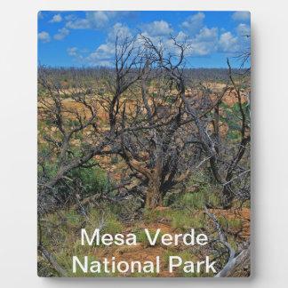 "Nationalpark"" Sammlung ""MESAs Verde Fotoplatte"