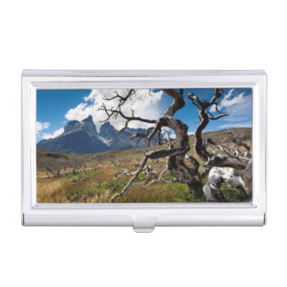 Nationalpark Torres Del Paine, durch Feuer Visitenkarten Etui