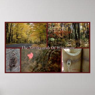 Natur-Collagen-Druck Northwoods Wisconsin saisonal Poster