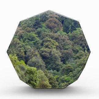 Natur der grünen Hügel Acryl Auszeichnung