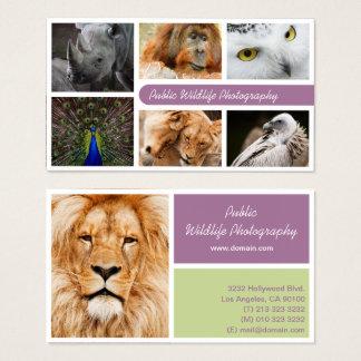 Natur-Fotograf-draußen Tier-Fotografie Visitenkarte