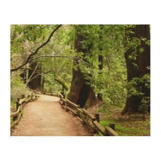 Natur-Fotografie des Muir Holz-Weg-II Holzleinwand