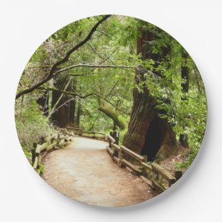 Natur-Fotografie des Muir Holz-Weg-II Pappteller