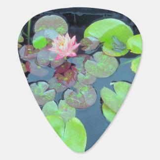 Natur - Frosch auf einer Lilien-Auflage Plektrum