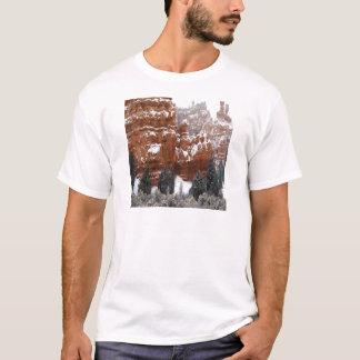 Natur-Winter-Kälte-Schlucht T-Shirt