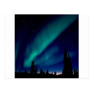 Natur zwingt Aurora Borealis Alaska Postkarte