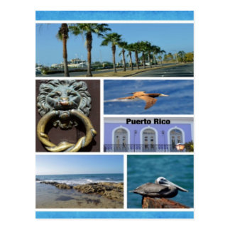Naturcollage von San Juan, Puerto Rico Postkarte