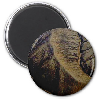 natürliche Stiche Runder Magnet 5,7 Cm