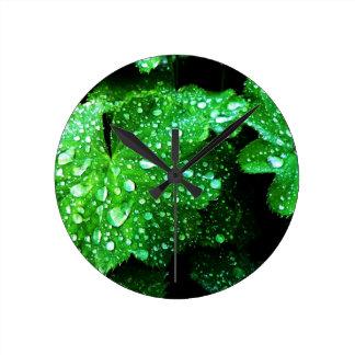 natürliches grünes Blatt verlässt Baum-Erde Runde Wanduhr