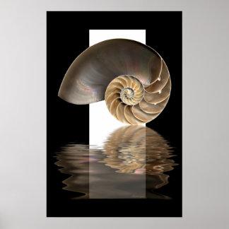 Nautilus-Muschel Druck Poster