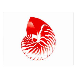 Nautilus-Muschel - dunkelrot und weiß Postkarte