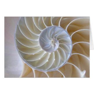 Nautilus-Muschel-goldene gewundene Fotografie Karte