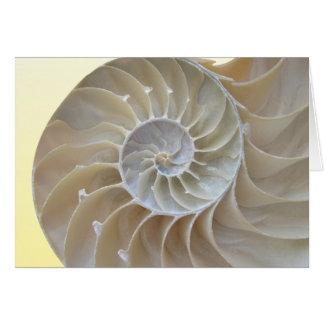 Nautilus-Muschel Karte