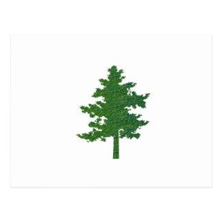navinJOSHI NVN37 symbolischer grüner Umwelt-Baum Postkarte