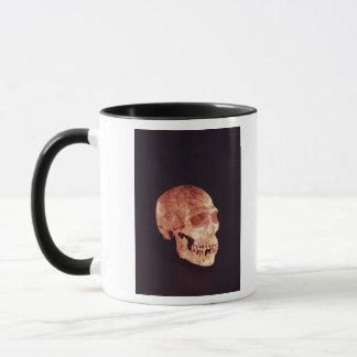 Neanderthal-Schädel, entdeckt auf Mt Carmel Tasse