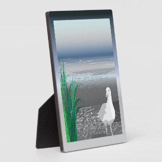 Nebel-Bank-Seemöweplakette Fotoplatte