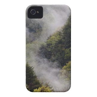 Nebel, der vom Bergabhang nach Frühlingsregen iPhone 4 Cover