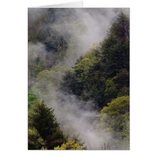 Nebel, der vom Bergabhang nach Frühlingsregen Karte