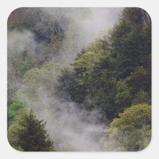 Nebel, der vom Bergabhang nach Frühlingsregen Quadratischer Aufkleber
