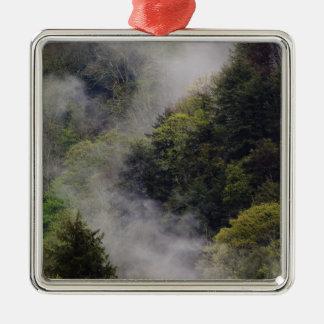Nebel, der vom Bergabhang nach Frühlingsregen Quadratisches Silberfarbenes Ornament