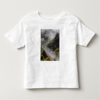Nebel, der vom Bergabhang nach Frühlingsregen Shirt