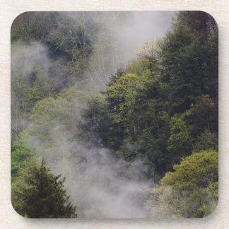 Nebel, der vom Bergabhang nach Frühlingsregen stei Drink Untersetzer