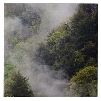 Nebel, der vom Bergabhang nach Frühlingsregen stei Fliesen