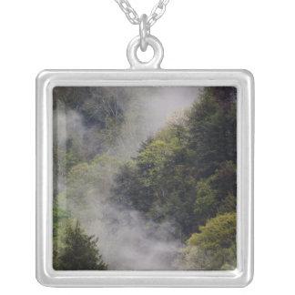 Nebel, der vom Bergabhang nach Frühlingsregen stei Selbst Gestalteter Schmuck