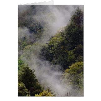 Nebel, der vom Bergabhang nach Frühlingsregen stei Grußkarte