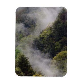 Nebel, der vom Bergabhang nach Frühlingsregen stei Magnete