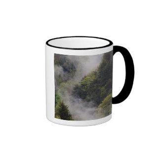 Nebel der vom Bergabhang nach Frühlingsregen stei Tassen