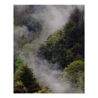 Nebel, der vom Bergabhang nach Frühlingsregen stei Poster