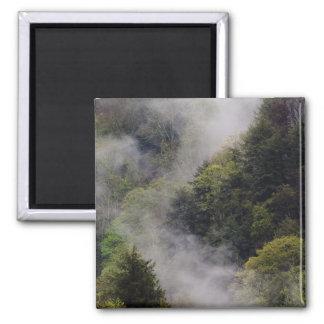 Nebel, der vom Bergabhang nach Frühlingsregen stei Quadratischer Magnet