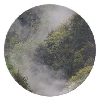 Nebel, der vom Bergabhang nach Frühlingsregen stei Flache Teller