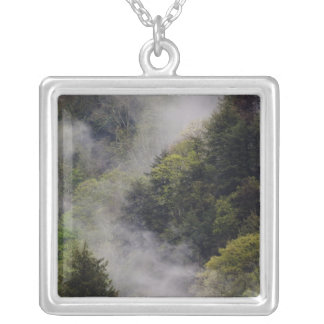 Nebel, der vom Bergabhang nach Frühlingsregen Versilberte Kette