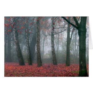 Nebel im Herbst-Wald mit rotem Blätter Karte