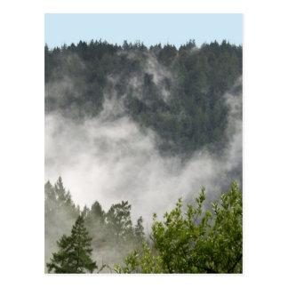 Nebel-Steigen Postkarte