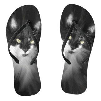 Nebelhafte Smokings-Katze Flip Flops