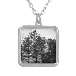 Nebelhafter ätherischer Spuk Baum-Waldholz-Nebel Versilberte Kette