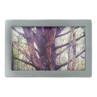 Nebelhafter Baum Rechteckige Gürtelschnallen